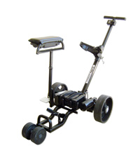 EGC-10 Calibre Electric Buggy